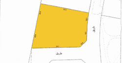 Land for rent located in Salmabad