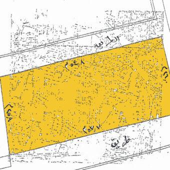 Commercial land for rent in Salmaniya
